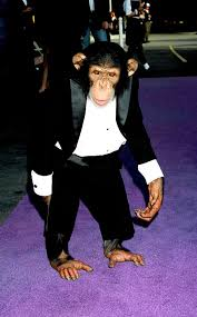 Michael Jackson's chimp Bubbles 'tried to commit suicide, was beaten and  self-harmed' - Mirror Online