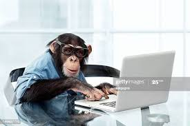 238 Monkey Computer Photos and Premium High Res Pictures - Getty Images